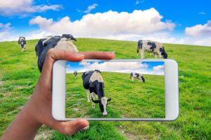 Agri Phones